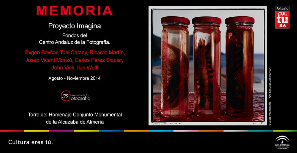 CAF_2014-08-Memoria-_-Proyecto-Imagina