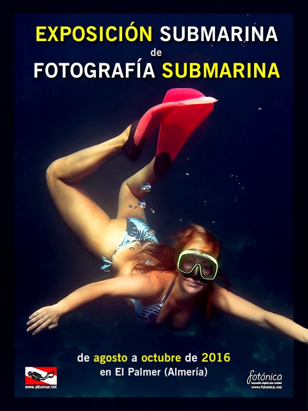 2016-Exposición-Submarina-de-Fotografía-Submarina-_-cartel_800